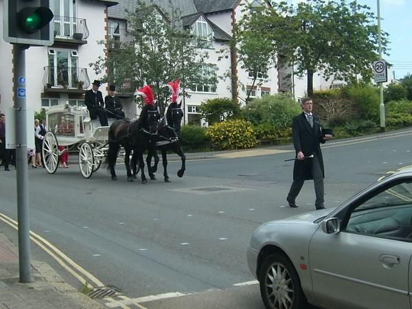 David paging the horse drawn hearse
